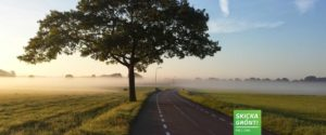 Herdins miljöarbete transport dhl skicka grönt