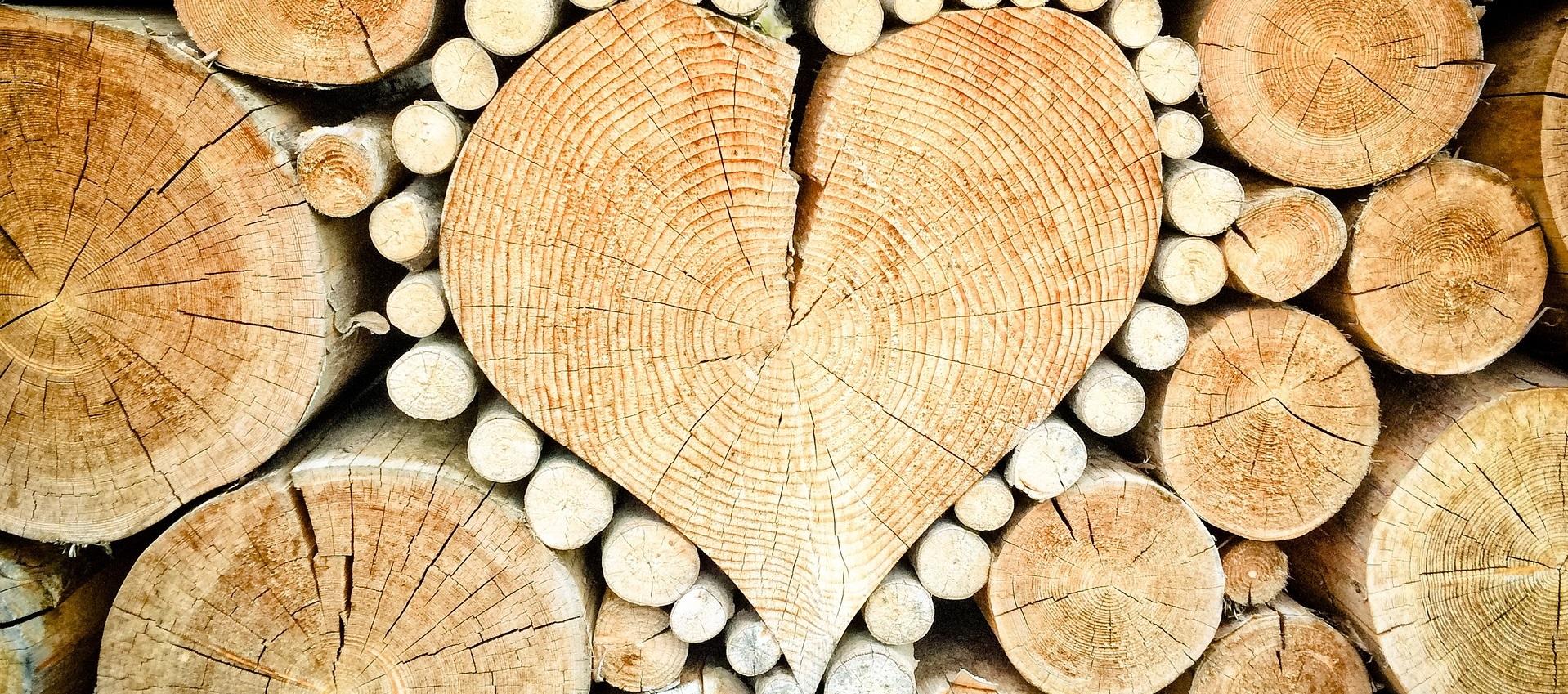 Herdins hjärta trä träslag och deras egenskaper